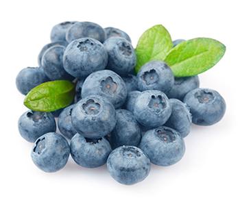 กลิ่นบลูเบอรี่ ( Blueberry Flavor )