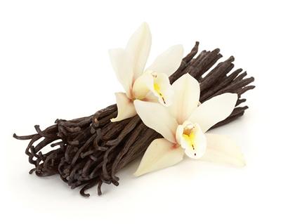 กลิ่นวนิลลา ( Vanilla Flavor )