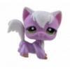 แมว Angola สีม่วง-ขาว #2271