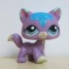 แมว Main Coon #2386