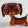 สุนัขดัชชุนด์ สีน้ำตาล #675