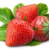 กลิ่นสตรอเบอรี่ ( Strawberry Flavor )
