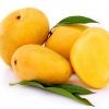 กลิ่นมะม่วง ( Mango Flavor )