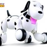 หมาบังคับวิทยุ smart-dog สุนัขบังคับวิทยุสั่งดารได้มากกว่า 20 คำสั่ง