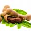 กลิ่นมะขาม ( Tamarind Flavor ) thumbnail 1