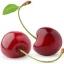 กลิ่นเชอรี่ ( Cherry Flavor ) thumbnail 1